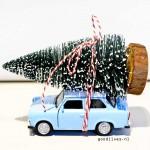 DIY: autootje met kerstboom op het dak (Actionhack #01)