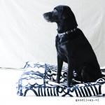 DIY: Making a dog pillow yourself (Ikeahack #1)